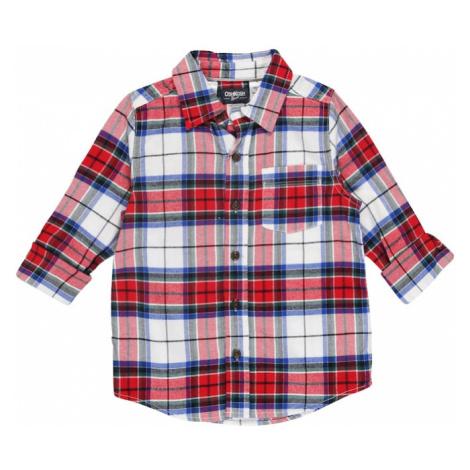 OshKosh Koszula czerwony / biały