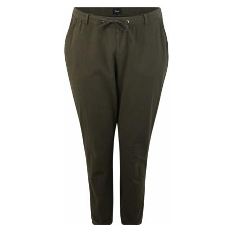 Zizzi Spodnie oliwkowy