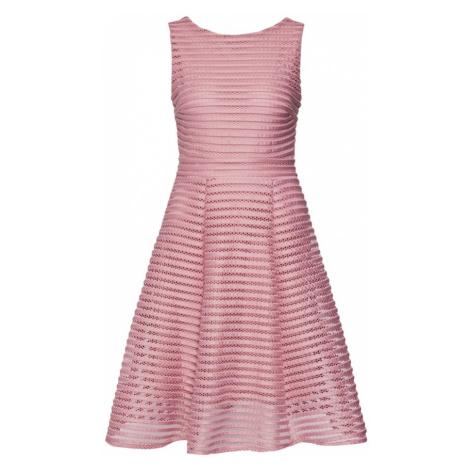 TFNC Sukienka koktajlowa 'Charlotte Dress' różany