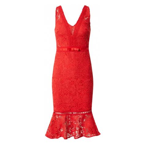 Lipsy Sukienka koktajlowa 'AC RED LACE BODYCON' czerwony