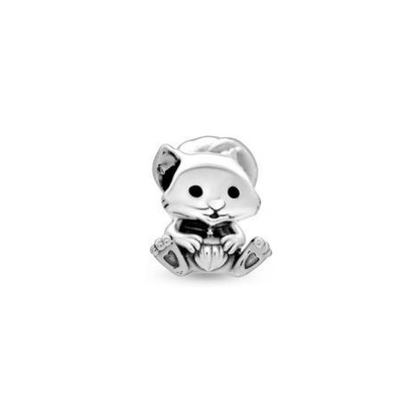 Pandora Charms 799105C01