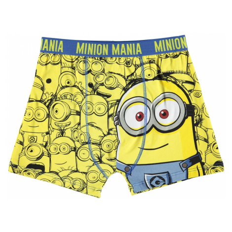 Character Single Boxer Shorts Junior Boys