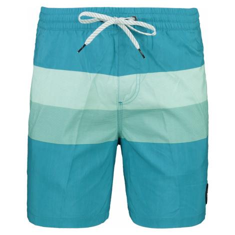 Men's swimming shorts QUIKSILVER SEASONS