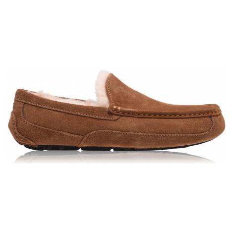 Ugg Ascot Pantofelek Sn00