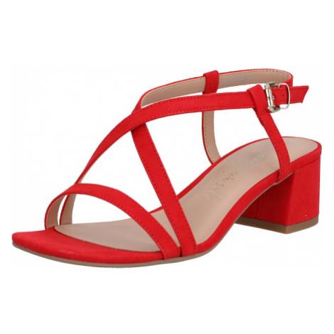 NEW LOOK Sandały z rzemykami 'WF RULIE' czerwony