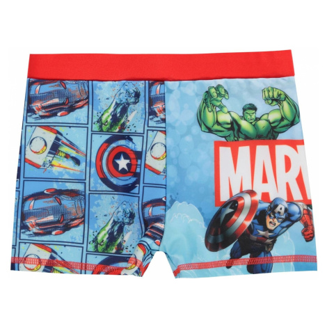Character Infant Boy's Swimming Briefs