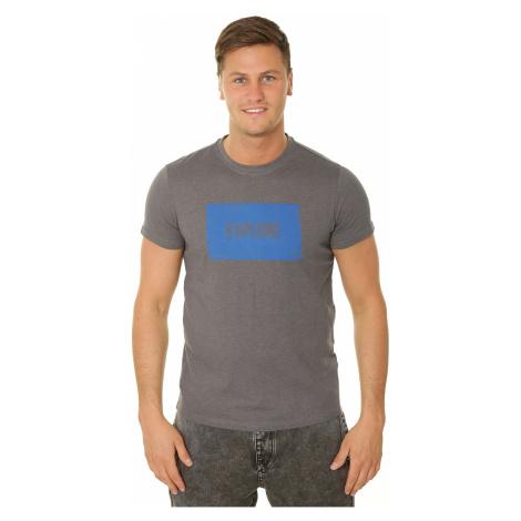 T-shirt 4F H4L19-TSM009 - 24M/Middle Gray Melange