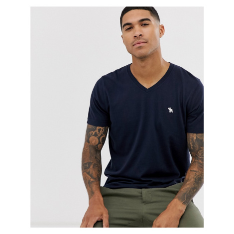 Abercrombie & Fitch icon logo vneck t-shirt in navy