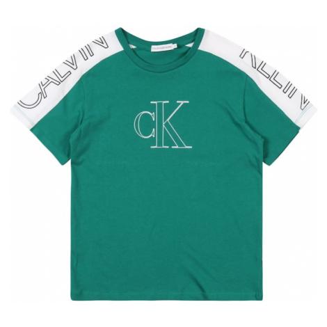 Calvin Klein Jeans Koszulka 'COLOUR BLOCK LOGO SS' zielony
