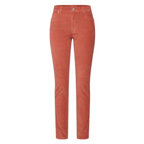 Calvin Klein Spodnie brązowy