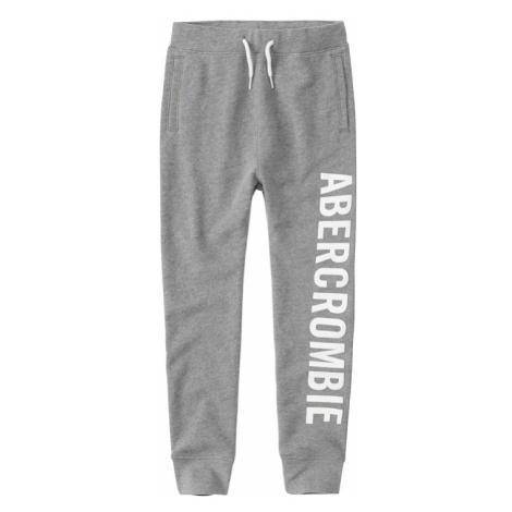 Abercrombie & Fitch Spodnie szary