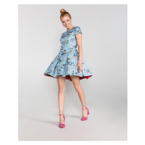 French Connection Sukienka Niebieski
