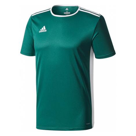 """""""Koszulka adidas Entrada 18 (CD8358)"""""""