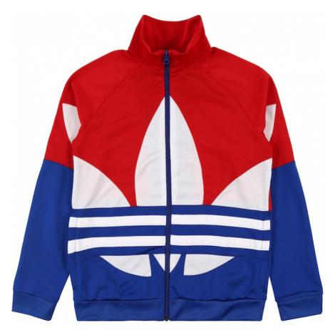 ADIDAS ORIGINALS Bluza rozpinana 'Big Trefoil' biały / czerwony / niebieski