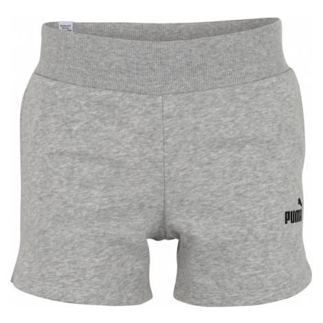 PUMA Spodnie sportowe jasnoszary