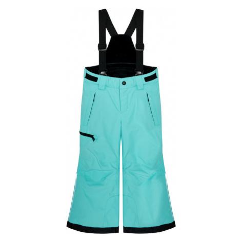 Reima Spodnie narciarskie Terrie 532186 Niebieski Regular Fit