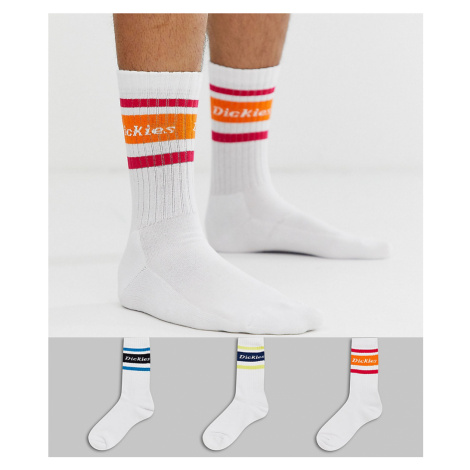 Dickies Madison Heights 3 pack socks with multi trim 1 in white