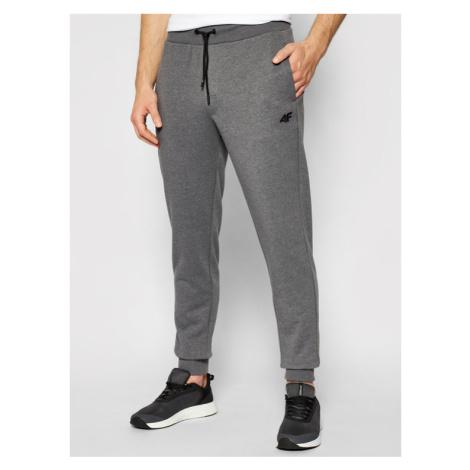 4F Spodnie dresowe H4L21-SPMD001 Szary Regular Fit
