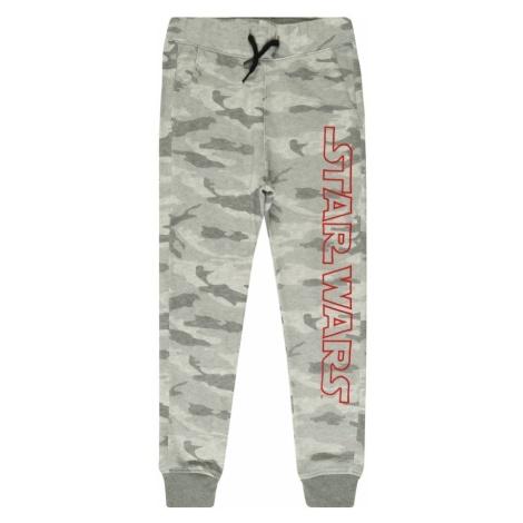 Abercrombie & Fitch Spodnie 'STAR WARS' szary