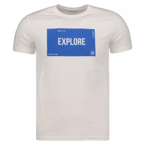 Men's t-shirt 4F TSM009