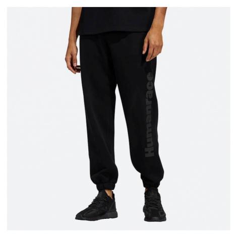 Spodnie adidas Originals x Pharrell Williams Basics Pant GL2120