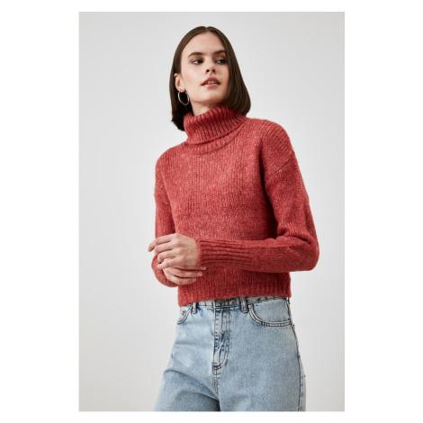 Bluza ze swetrem Trendyol Rose Dry Turtleneck Knitwear