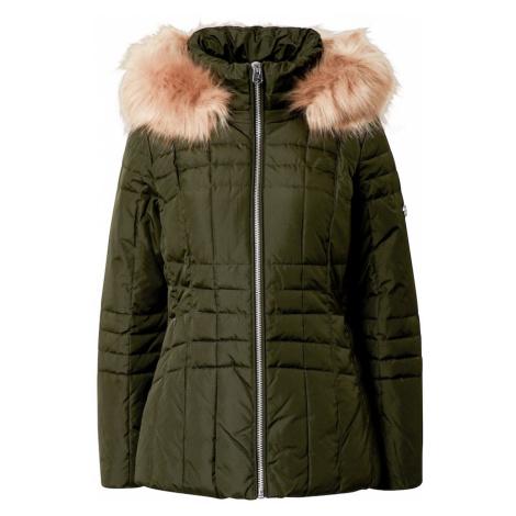 Calvin Klein Kurtka zimowa oliwkowy / beżowy