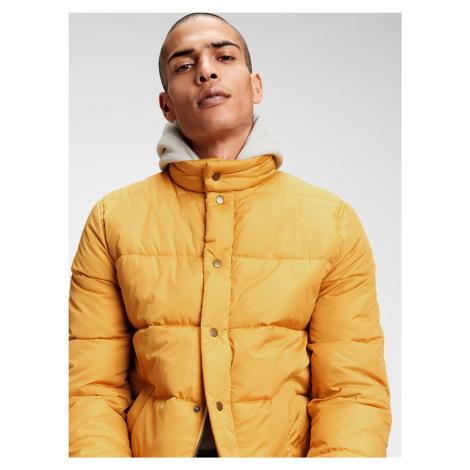 GAP żółta kurtka męska