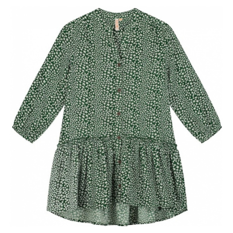Shiwi Sukienka zielony / biały