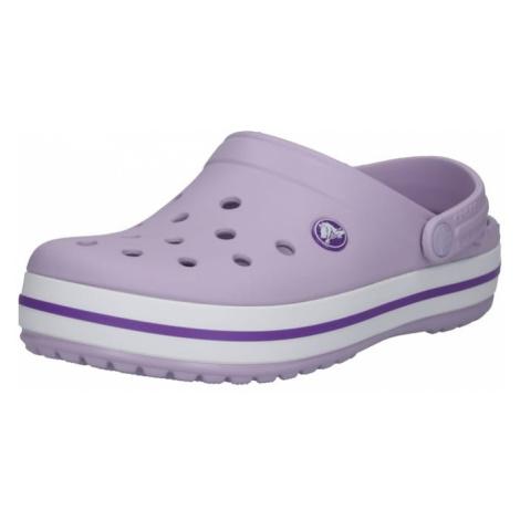 Crocs Chodaki 'Crocband' fioletowy