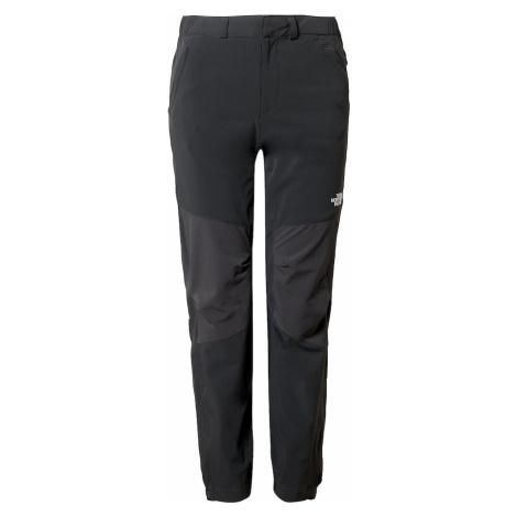 THE NORTH FACE Spodnie outdoor 'Exploration' ciemnoszary / szary bazalt / biały