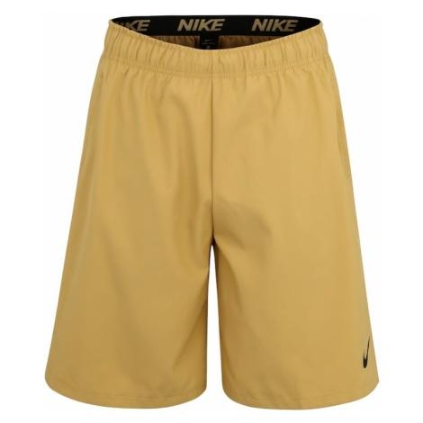 NIKE Spodnie sportowe 'Flex' beżowy
