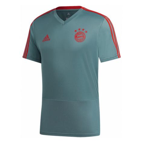 """Koszulka Treningowa adidas FC Bayern Monachium (CW7263)"""
