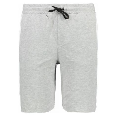 Trendyol Grey Men's Shorts & Bermuda