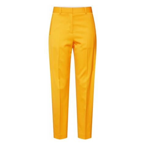 Calvin Klein Spodnie w kant jasnopomarańczowy / biały