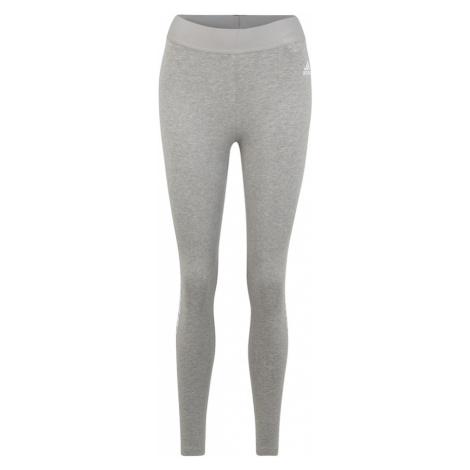 ADIDAS PERFORMANCE Spodnie sportowe jasnoszary