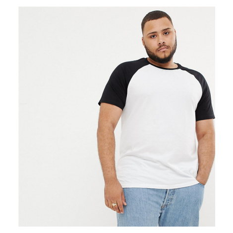 ASOS DESIGN Plus t-shirt with crew neck with contrast raglan
