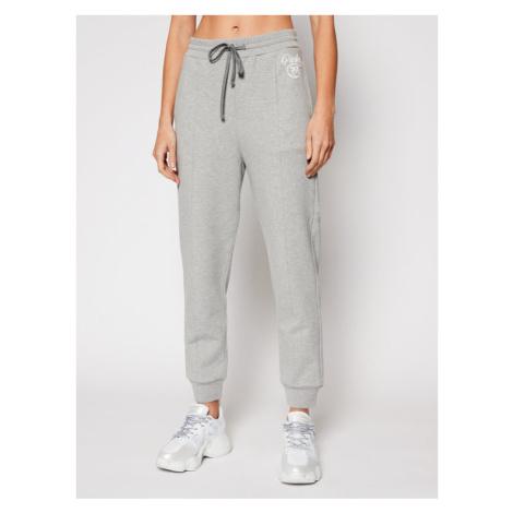 Pinko Spodnie dresowe Bugs AI 20-21 PRR 1N12XZ Y75F Szary Regular Fit