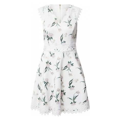 Ted Baker Sukienka biały / mieszane kolory