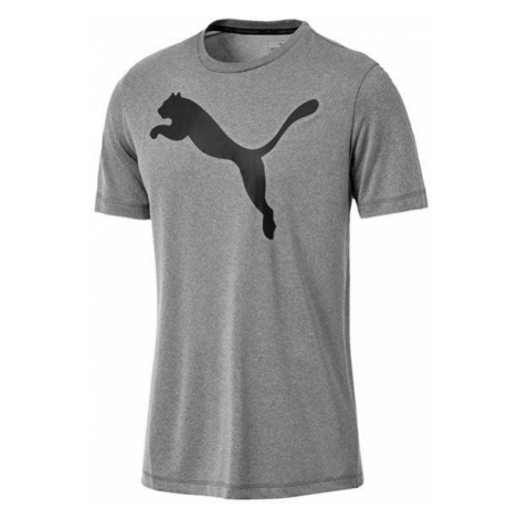 Koszulka Puma Active Big Logo Tee 851703 03