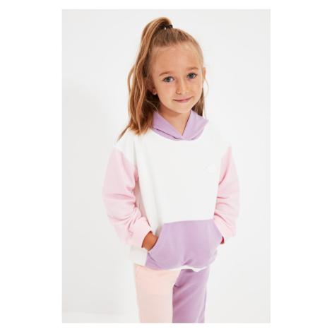 Trendyol Ecru Color Block Patch Haftowana dziewczęca bluza z dzianiny
