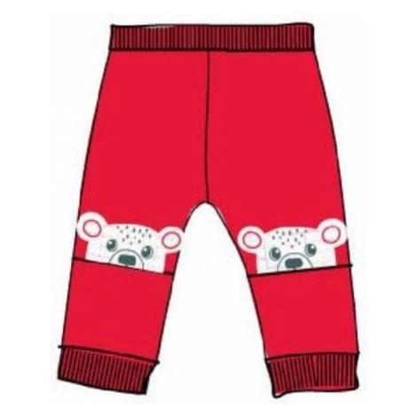 Carodel chłopięce dresy z pluszowymi misiami czerwone