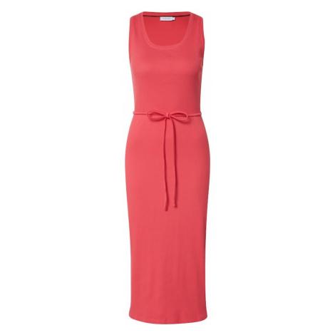 Calvin Klein Sukienka różowy