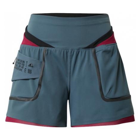 ADIDAS PERFORMANCE Spodnie sportowe benzyna / czerwony