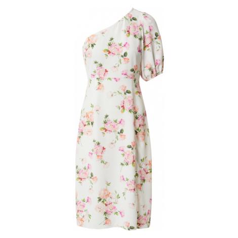 Miss Selfridge (Petite) Sukienka zielony / biały / różowy pudrowy / różowy / łososiowy