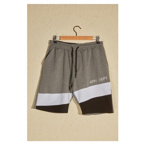 Trendyol Anthracite Men's Shorts & Bermuda