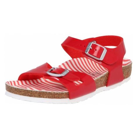 BIRKENSTOCK Sandały 'Rio' ognisto-czerwony