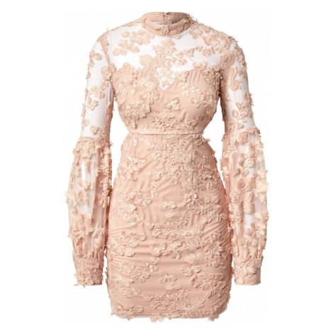 Love Triangle Sukienka różowy pudrowy