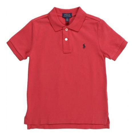 POLO RALPH LAUREN Koszulka 'SS KC' czerwony