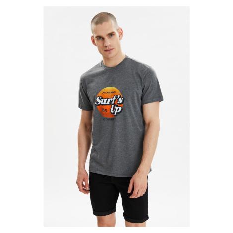 Modyol Antracyt Męskie paski z krótkim rękawem T-shirt z krótkim rękawem Trendyol